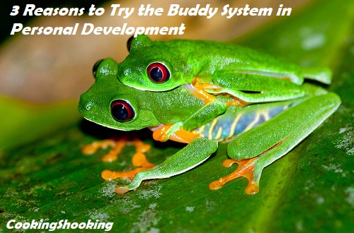 3 Reasons to Try the Buddy System in Personal Development
